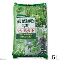 観葉植物専用培養土 5L ガーデニング 専用土 室内 園芸