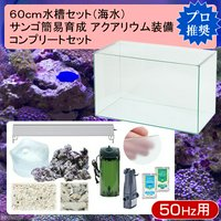 60cm水槽セット サンゴ簡易育成コンプリート 海水アクアリウム(水槽&他11点)プロ推奨セット 50Hz東日本用