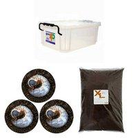 国産カブトムシ幼虫飼育セット(説明書付)