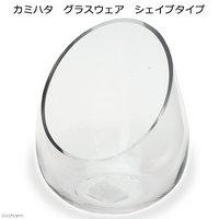 カミハタ グラスウェア シェイプタイプ