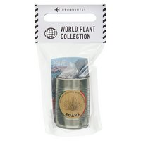 WORLD PLANT COLLECTION アガベ