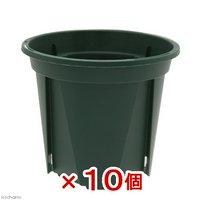 スリット鉢 EUPOT 8cm モスグリーン 10個入り