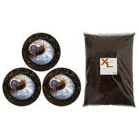 国産カブトムシ幼虫(3匹) + XLマット カブト用 10リットル(説明書付)