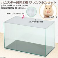 ハムスター飼育水槽 ぴったりふたセット 60×30×36cm 飼育ケージ