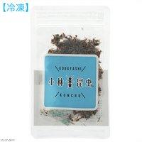 冷凍★ツムギアリ (働きアリ) 10g 別途クール手数料