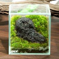 GEX グラステリア フィット 100CUBE 浅間溶岩石 レイアウト完成品(1個)