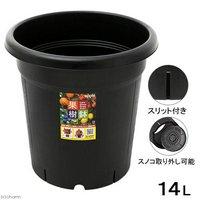 アップルウェアー 果樹鉢 310型 ブラック