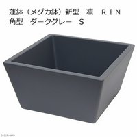 睡蓮鉢(メダカ鉢) 新型 凛 RIN 角型 ダークグレー S 睡蓮鉢金魚鉢メダカ鉢