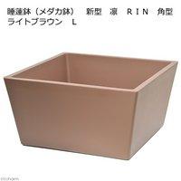 睡蓮鉢(メダカ鉢) 新型 凛 RIN 角型 ライトブラウン L 睡蓮鉢金魚鉢メダカ鉢