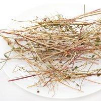 国産 かじってたのしいそばの茎 10g 小動物用のおやつ 無添加 無着色