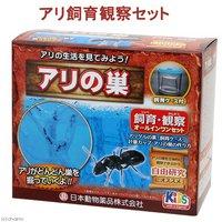 日本動物薬品 ニチドウ アリ飼育観察セット アリの巣