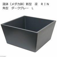 睡蓮鉢(メダカ鉢) 新型 凛 RIN 角型 ダークグレー L 睡蓮鉢金魚鉢メダカ鉢