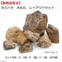 カミハタ 木化石 レイアウトセット 形状おまかせ