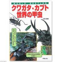 アウトレット品 WORLD BEETLES クワガタカブト 世界の甲虫 訳あり
