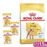 ロイヤルカナン プードル 成犬用 ドライフード 1.5kg ジップ付 + パウチ 3袋