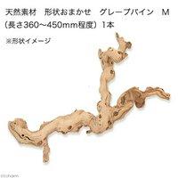 天然素材 形状おまかせ グレープバイン M (長さ360~450mm程度) 爬虫類 小動物