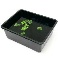 鈴木製作所 角型タライ フラット 黒 おまかせ浮き草3種付
