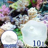 足し水くん テナーボトル コック付き 天然海水(海洋深層水) 10リットル