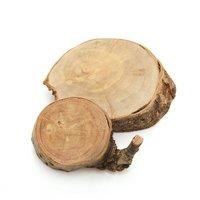 国産 天然素材の切り株ステージ さくらの木 S 2個入 かじっても安心 かじり木