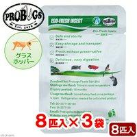 プロバグズ 真空生昆虫 グラスホッパー 8匹入×3袋セット PROBUGS ECO-FRESH GRASSHOPPER