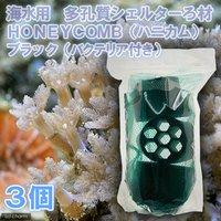 ろ材 海水用 多孔質シェルターろ材 HONEYCOMB(ハニカム)ブラック(バクテリア付き)(3個)