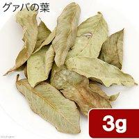 小動物のハーブ 沖縄県石垣島産 グァバの葉 3g 小動物のおやつ 国産 無添加 無着色