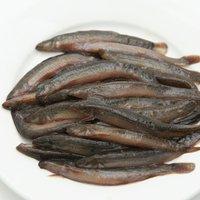 冷凍★国産 冷凍どじょう(小)100g 爬虫類 大型魚 無添加 無着色 別途クール手数料