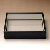 シーラ箱 (両面ガラスタイプ) 昆虫 標本用品 標本箱