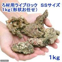 ろ材 バクテリア付き ろ材用ライブロック SSサイズ(1kg)(形状お任せ)