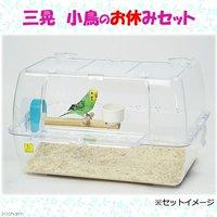 三晃商会 SANKO 小鳥のお休みセット スターターセット 鳥 小鳥