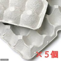 紙製卵トレー 45×29cm 5枚セット 昆虫 コオロギ 飼育 ハウス ケース